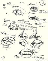 Face study by Lady-Revolution