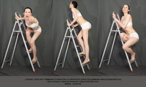Ladder #006 (pose reference)