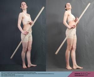 Stick/Wand #017 (pose reference)