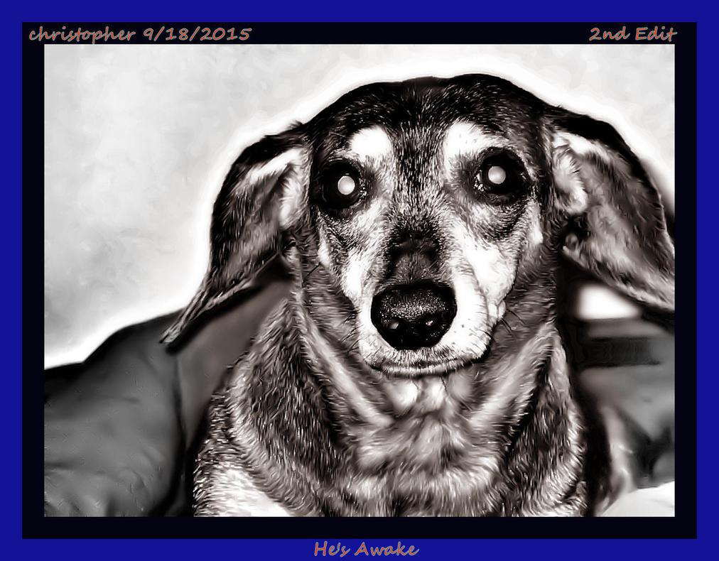 Watch Dogs Unknown Impg