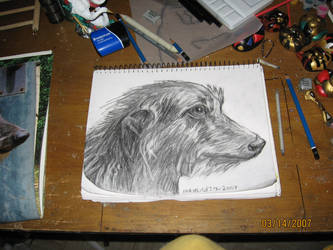 Deerhound head by Vampiric-Conure