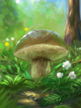 Myshroom