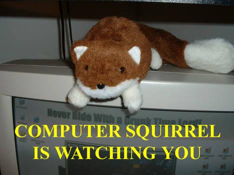 Beware of Squirrel