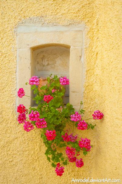 Flower Decoration by amrodel