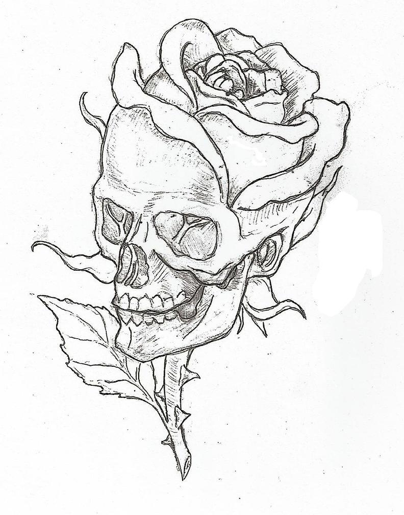 Skull rose by epickickboxer on deviantart for Cool rose coloring pages