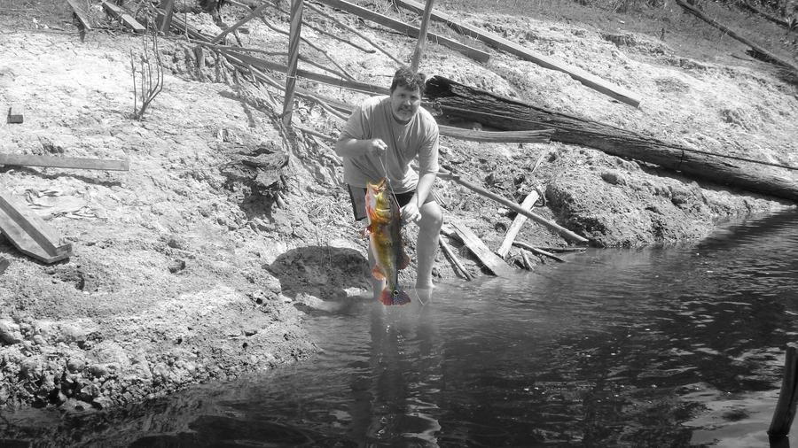 Fishing a tucunare in amazon by zackguerra on deviantart for Amazon fishing net
