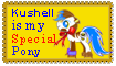Kushell Special Pony For Alexis