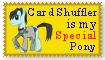 Personal Stamp/Banner Nr 4 - My Special Pony Him by Kushell