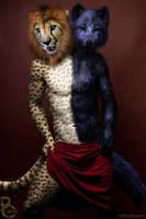 Half and Half by pythos-cheetah