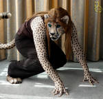 Cat-Like Reflexes (Remastered)