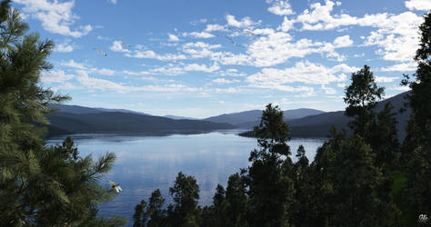Lake Warren