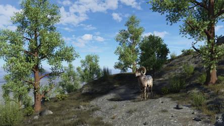 Ram Ridge