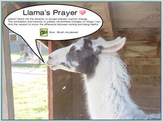 Llama Prayer for deviantART by VSConcepts