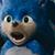 Sonic the Movie Icon 2
