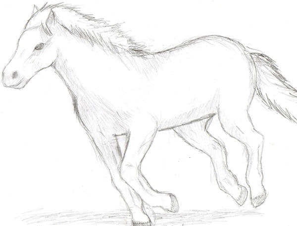 Fast running horse drawing
