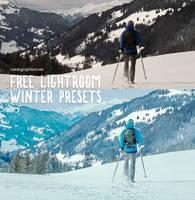 Free Winter Presets for Adobe Lightroom by NaldzGraphics