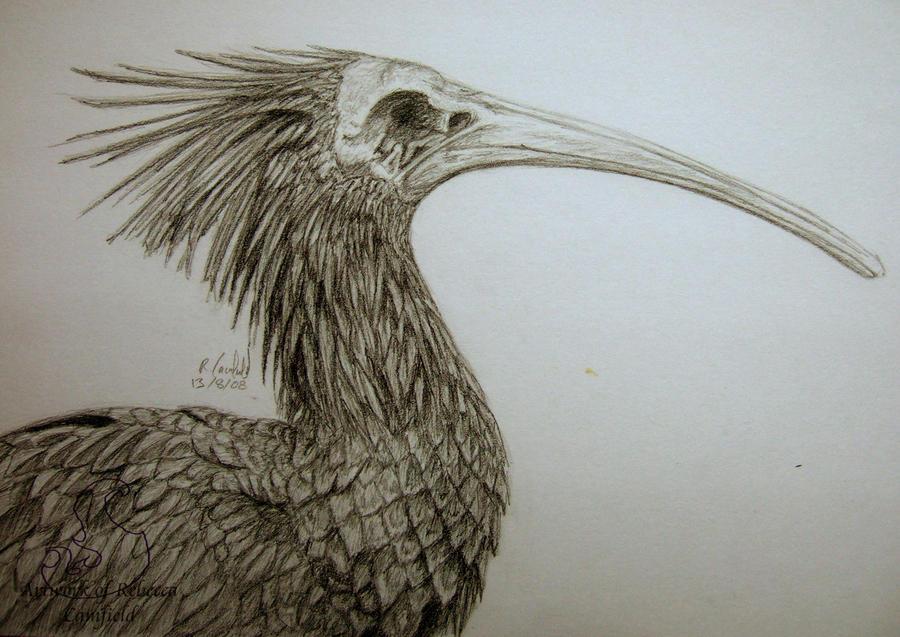 deathbird 3 by chaosia