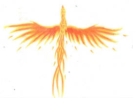 flying phoenix by chaosia