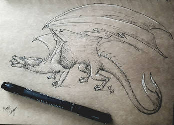 Mirror dragon sketch by chaosia
