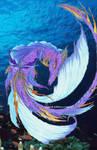dragon fish?