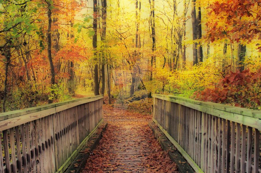 Wooden Bridge   HDR by Tom-MacPherson