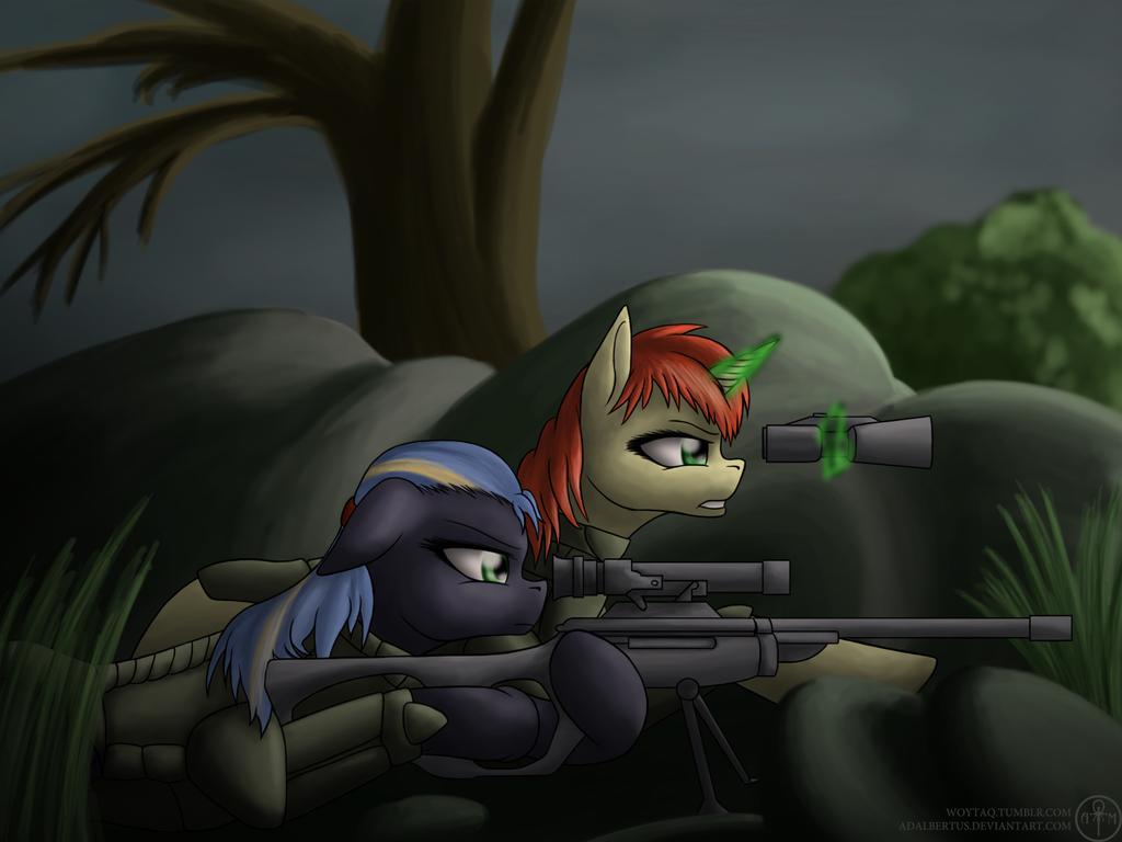 [Obrazek: sniper_team__fo_e__by_adalbertus-d77gf5a.png]