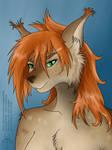Amber as a Lynx