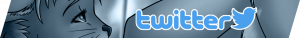 Banners2-twitter-300x38