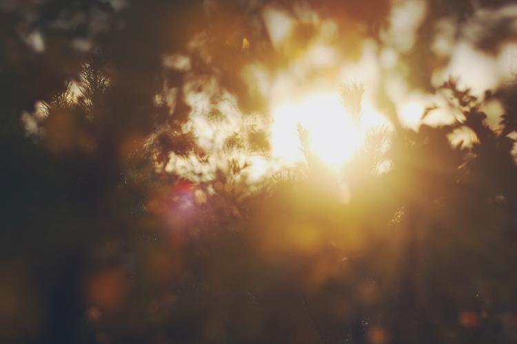 sunshine reggae by chillione