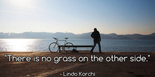 There is no grass on the other side