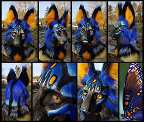 Blue Butterfly Cat Mask!