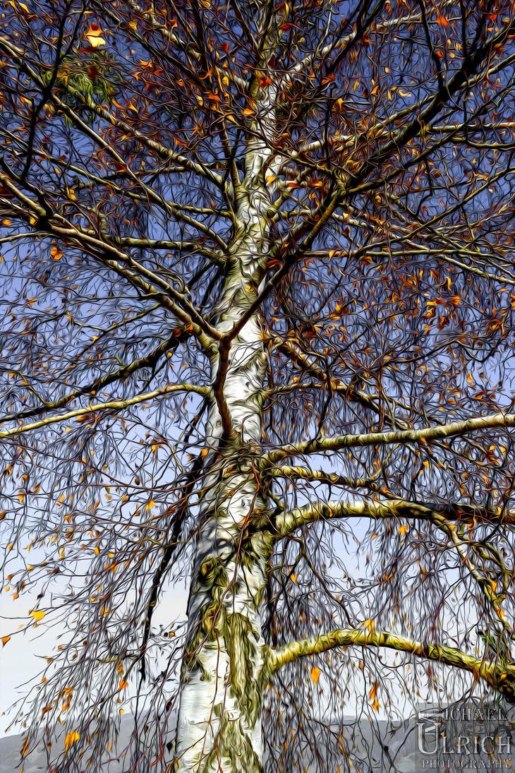 warten auf den Winter by schiller142