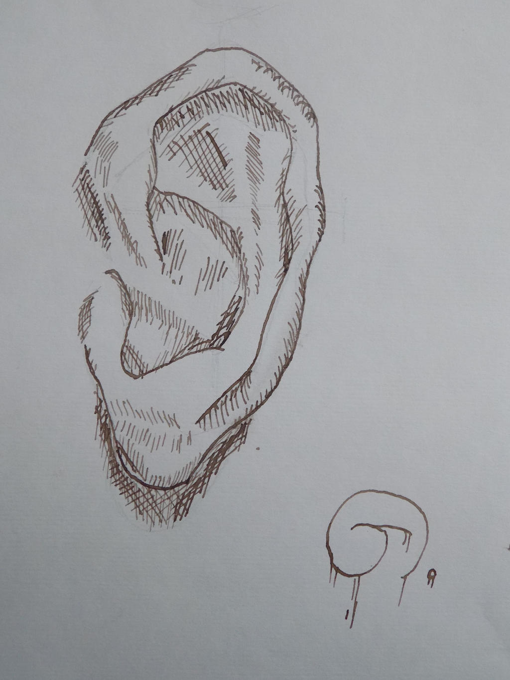 Ear sketch by TREBJESANINart