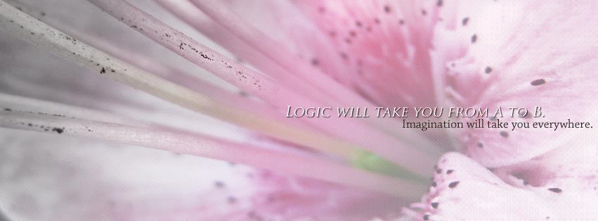 PhotoManip - Logic vs Imagination by KajatheDog