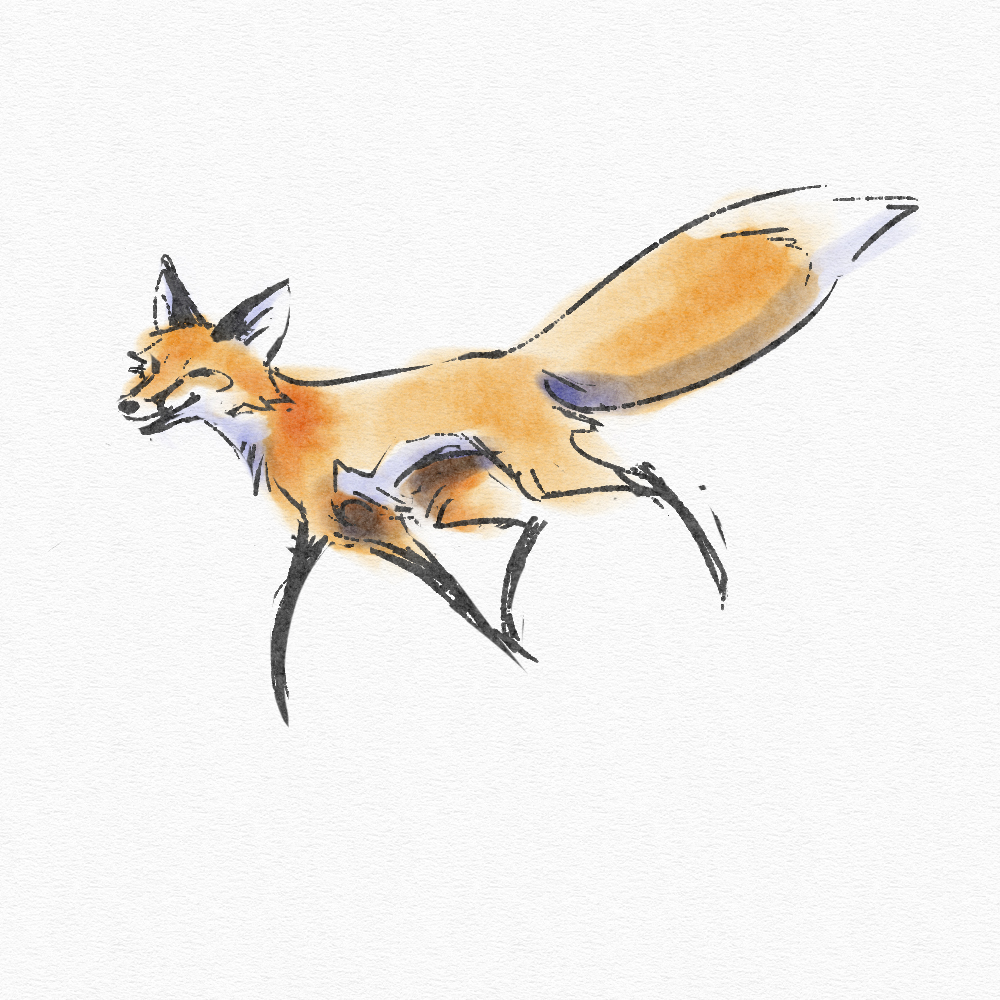Fox Faux Watercolor doodle by KayFedewa