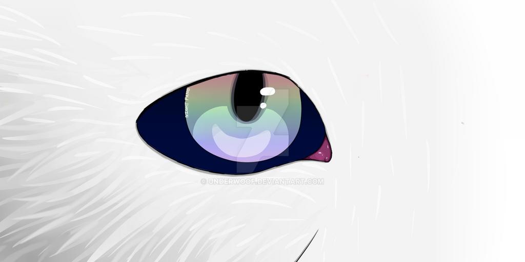 Fur/eye practice (Ft old OC of mine)  by UnderWoof