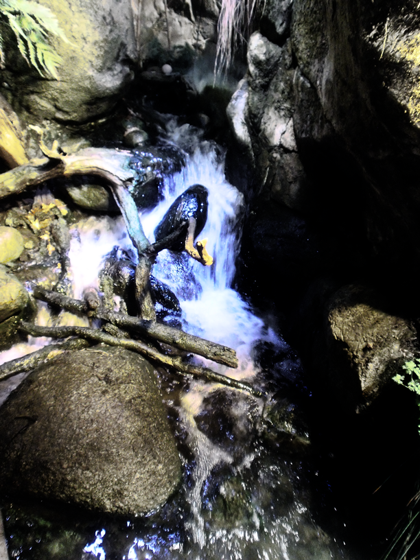 Stream by blueygh2