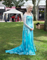 elsa at a children's festival
