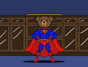 SuperTed's Home Safety