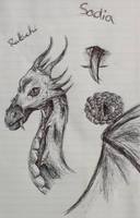 Sadia sketch by XxRakichixX