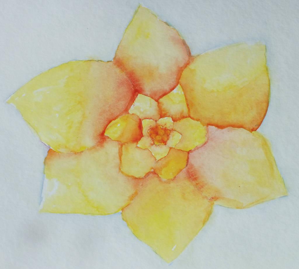 Flower by XxRakichixX
