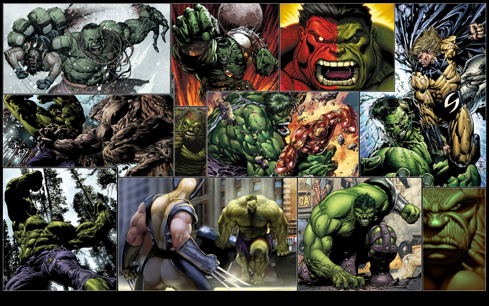 Hulk_Wallpaper_by_GT_Orphan.jpg