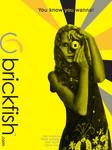 Brickfish Ad Contest