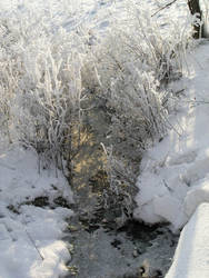 Golden Winter by Gizelle