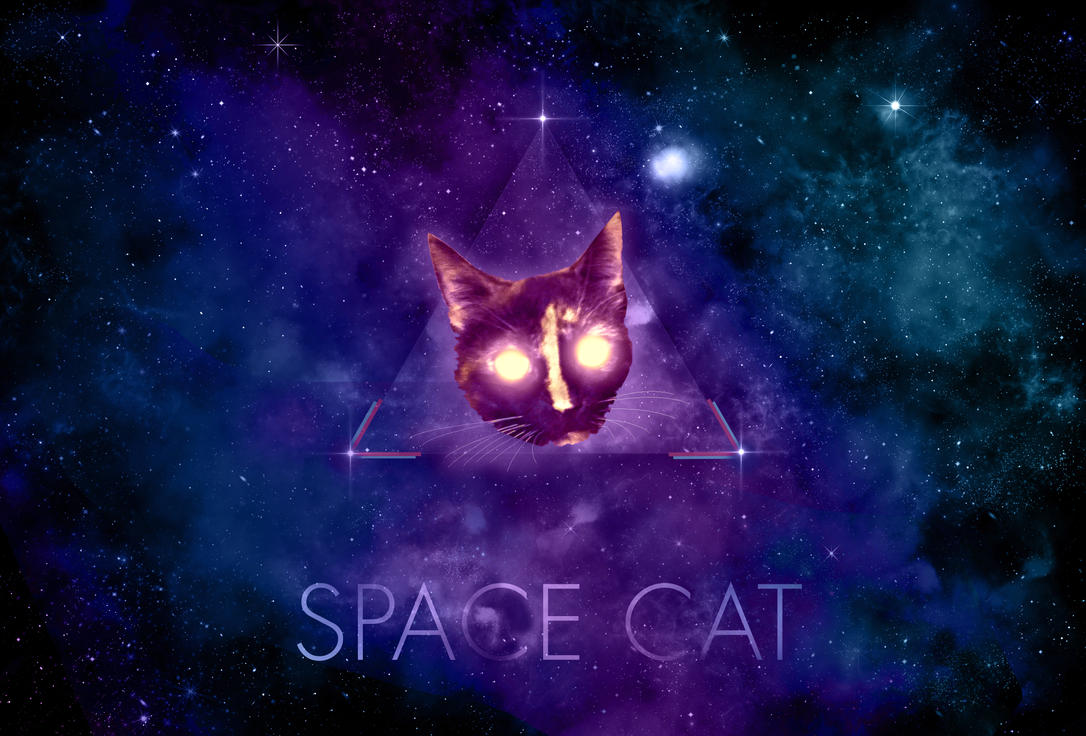 Space Cat by surlana