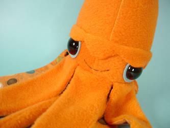 giant squid - close up