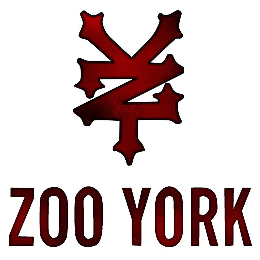 2011 tech deck zoo york chrome trucks chaz ortiz dvd ebay