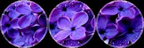 F2U|Decor|Lilac by Mairu-Doggy