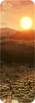 F2U Decor Dawn by Mairu-Doggy