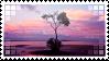 Stamp #9